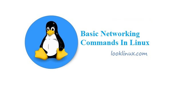 basic-networking-commands