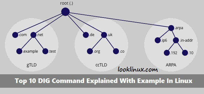 dig-command-example