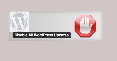 Disable-automatic-update-wordpress-750x430