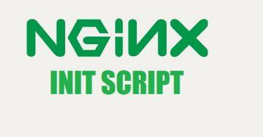 nginx-init-script