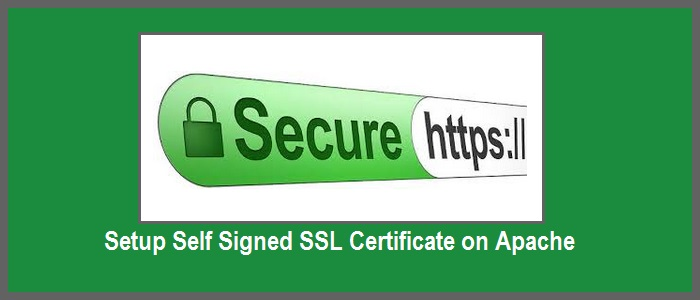 How to Setup Self Signed SSL Certificate on Apache - LookLinux
