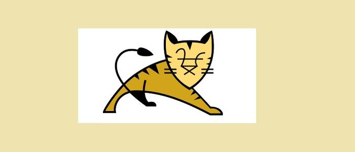 tomcat-8